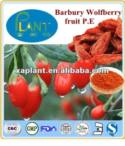 GMP Manufacturer High Quality &100% natural organic goji berries extract- polysaccharides 20%,40%,60%