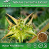 100% natural plant extract tribulus terrestris Saponins 20-98%,tribulus terrestris extract Powder,tribulus terrestris extract