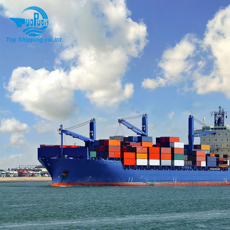 Top Shipping - DDP DDU from China to UK Amazon warehouse by sea