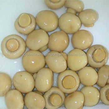 New Crop Canned Mushroom Whole Button Mushroom