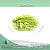 food &beverage guar bean gum in 3W Factory