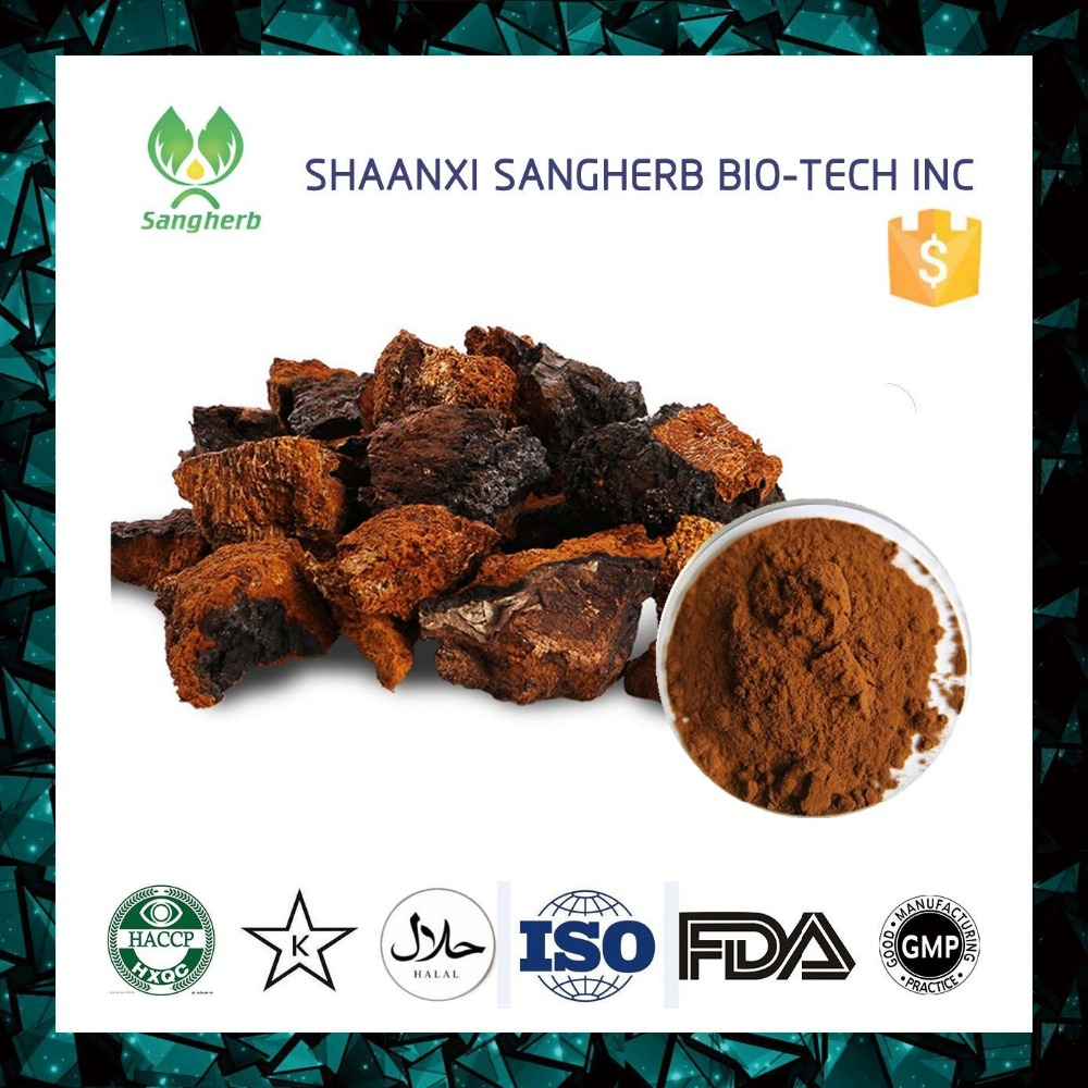 30% polysaccharide chaga mushroom extract from Changbai mountain