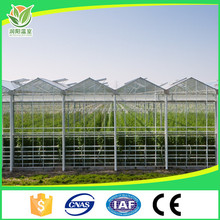 low cost venlo glass agricultural greenhouse philippines