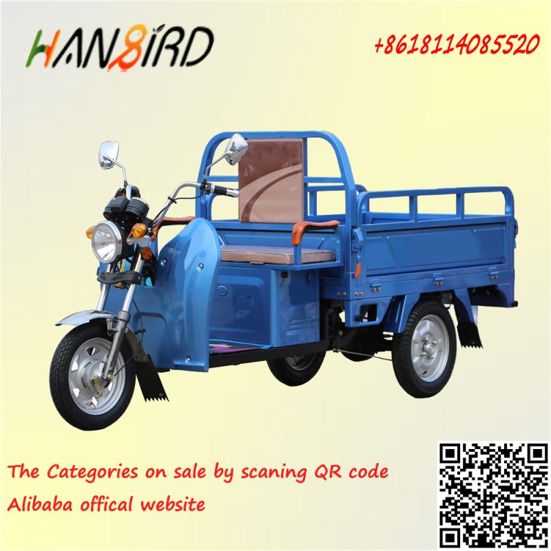 48v650w adult cargo tricycle price whole sale