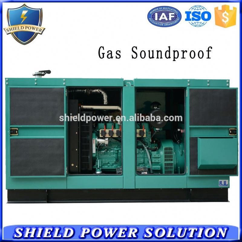 CNG compressed natural gas generator factory gen