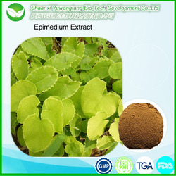 Anti-bacterial pharmaceutical raw material Epimedium Extract/ Horny goat weed extract