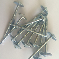 steel galvanized roofing nails with umbrella head