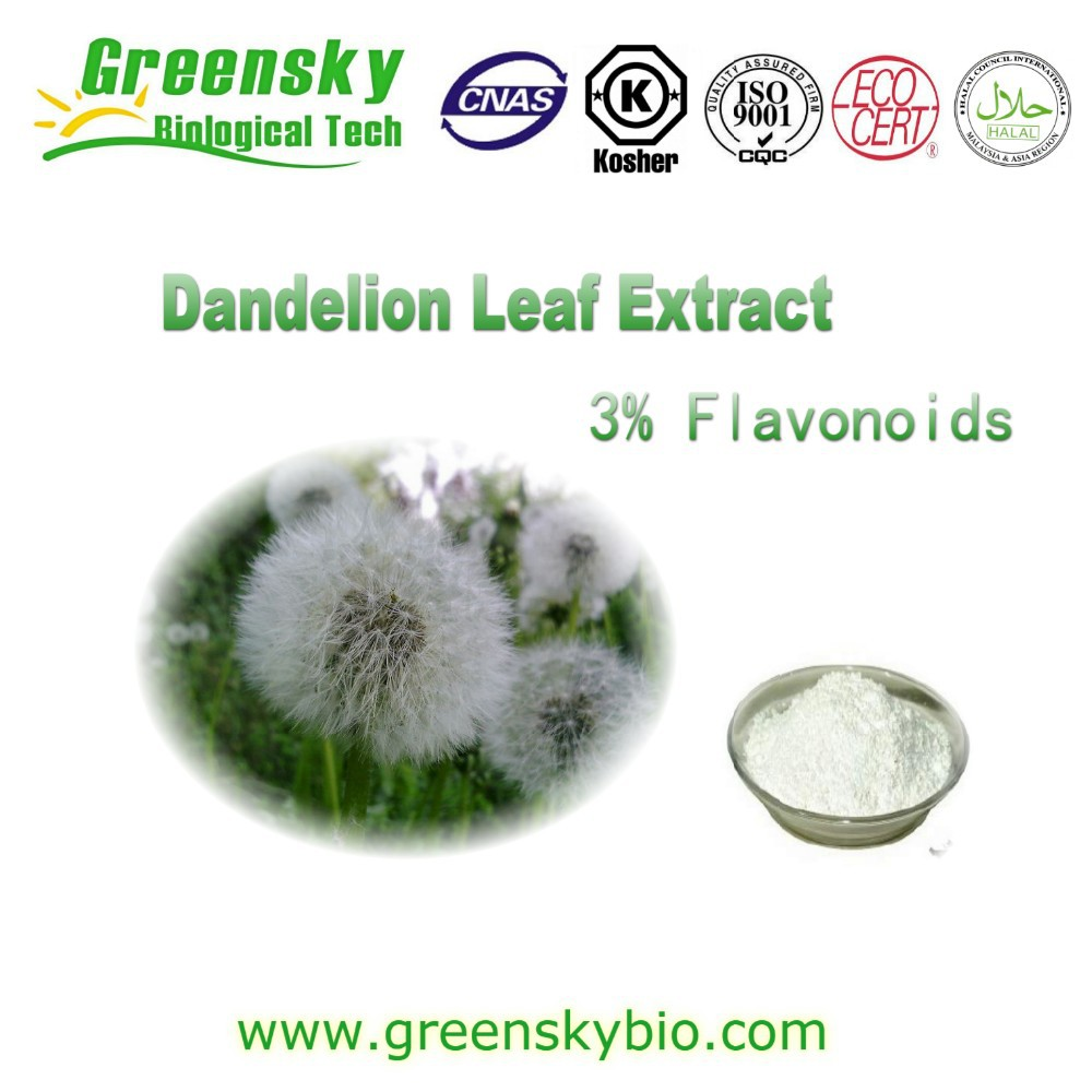 Dandelion Extract Flavones/ Dandelion Extract Flavonoids/ Dandelion Leaf Extracts See Larger Image Dandelion Extract Flavones/