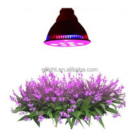 chinese website tropical fruits names led grow lamp