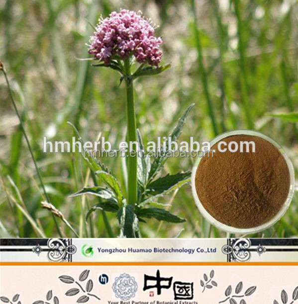 Halal&Kosher Valerian Essential Oil/Valerian Oil/Valerian e Liquid