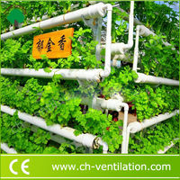 Factory Supply commercial greenhouse hydroponic hydroponics