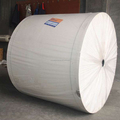 160gsm Polyester Mat for SBS modified bitumen membrane