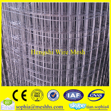 g i welded wire mesh anping factory