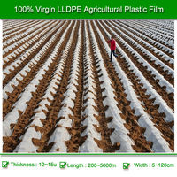 Cheap Transparent Agricultural Mulch Plastic Film