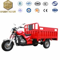 Customized Three Wheel Motorcycle 3 Wheel