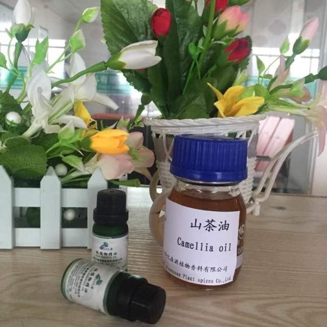 Edible Tea Seed Oil Vegetable Cooking Oil From Camellia Sinensis Seed