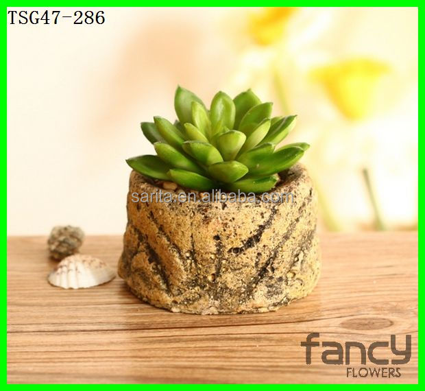Venta al por mayor plantas bonsai pots cactus artificial for Cactus enanos por mayor