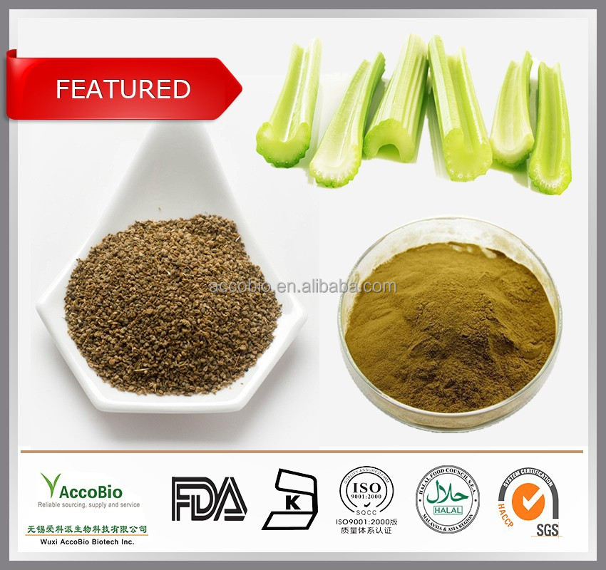 Top quality powdered Celery Seed Extract 5:1 15:1 20:1