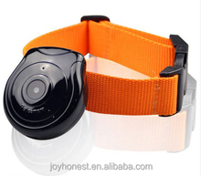 Wireless ip camera pet collar camera spy camera for pet