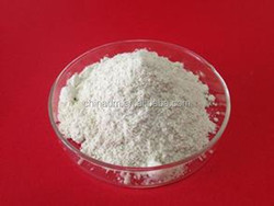 xylanase enzyme with cheap price