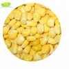 iqf & frozen bulk sweet corn