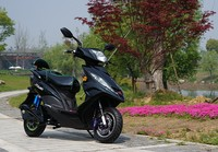 60V 800W four wheel for sale e scooter with CE certification