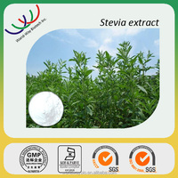 GMP manufacturer high quality 100% pure stevia extract powder