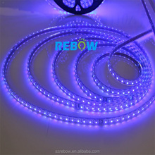 led lighting 5050 110V 120V 230V 220V 60leds/m US EU power plug led rgb strip 100m