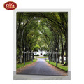 Spring Scenery Avenue With LED Canvas Prints for Wall Decoration