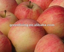 2014 fresh gala apples specifications ( original place shandong,china)