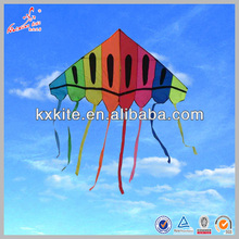 Large Kites for Sale Rainbow delta kite with Multicolor tail