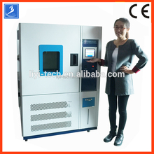 Temperature Environmental Thermal Humidity Test Machine Chamber