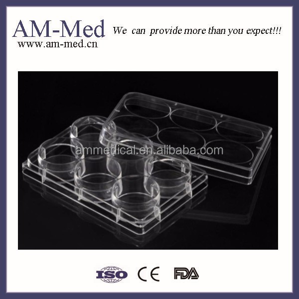 Cell and Tissue Culture Plates (Bottle)
