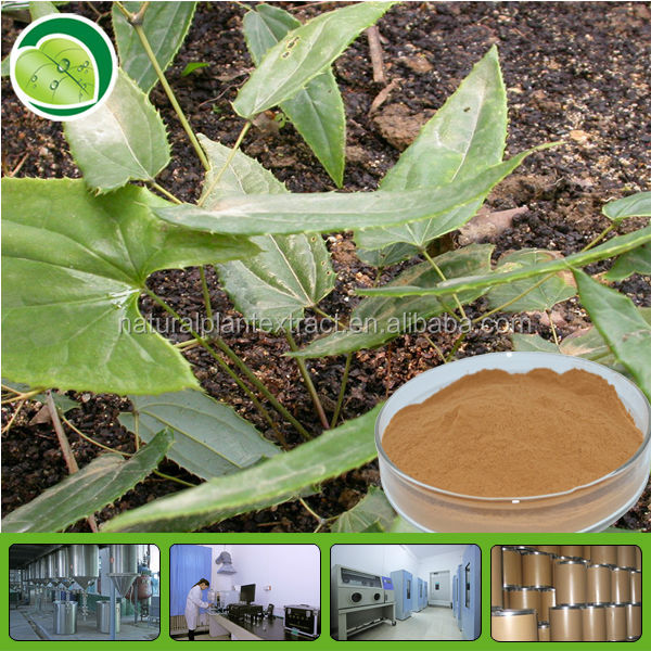 100% pure epimedium extract 5%-98% icariin powder