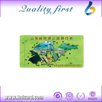 CMYK Printing Plastic Membership Card for Games