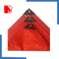 pe plastic tarpaulin with all kinds of size, cheap tarpaulin and jumping tarpaulin available