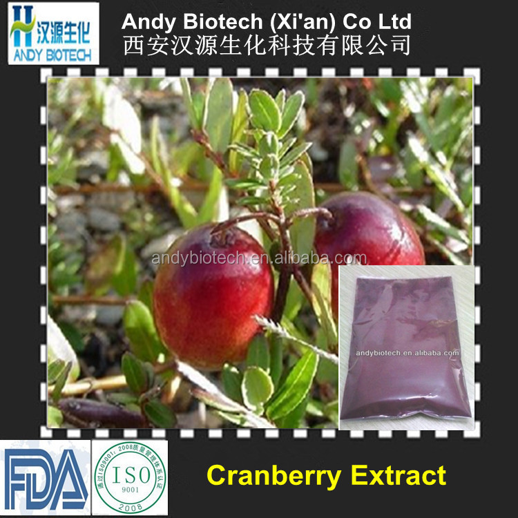 Best Selling Plant Extract Cranberry P.E. 40% Proanthocyanidins