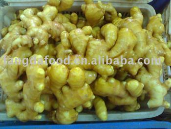 new air-dried ginger/ginger price market