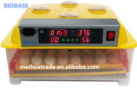 high quality egg incubator/poultry/chicken egg incubator on hot sale