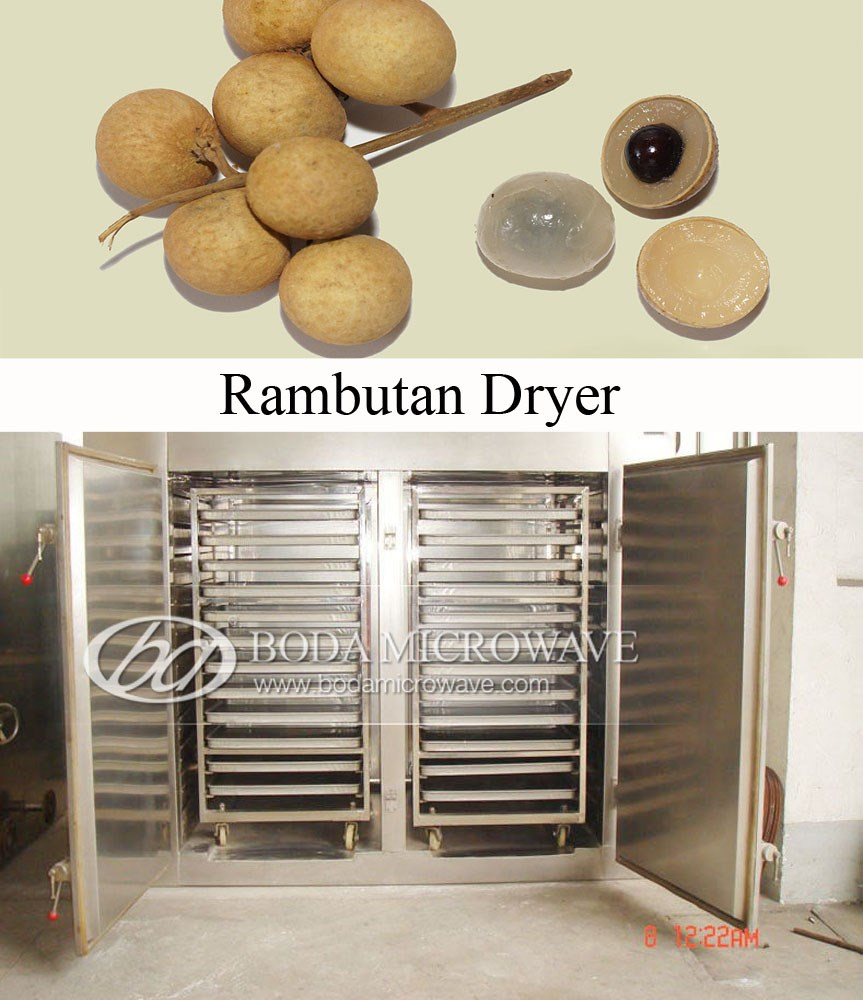 dehydrated onion machine