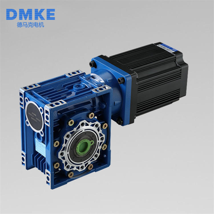 Customized 12v 24v 750watts worm gear box brushless motor 48v 65nm