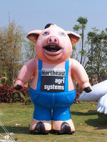 NB Creative Customized inflatable pig for advertising