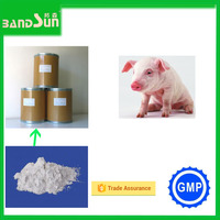health care product white powder drugs veterinary medicine poultry medicine feed additive vitamin c veterinary vaccine