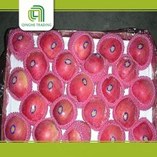 fresh red star apple with cheap price