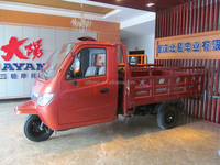 Hot Sale 250cc automatic hydraulic dumper adult cargo 3 wheel tricycle