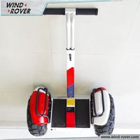 Fashion Adult Electric Tricycle