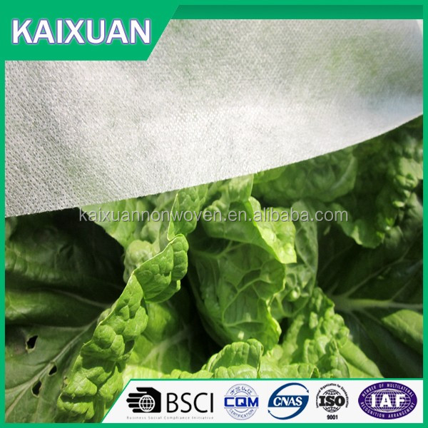 wholesale agriculture Green Color Plant Tree Cover