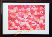 black PVC beautiful flower design photo frame 50x70cm