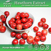 100% Natural Hawthorn Berry Extract /Hawthorn Fruit P.E/ Hawthorn Fruit Extract Powder