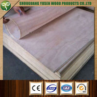 8mm Factory Direct Sales e0 glue Flexible Plywood for furniture